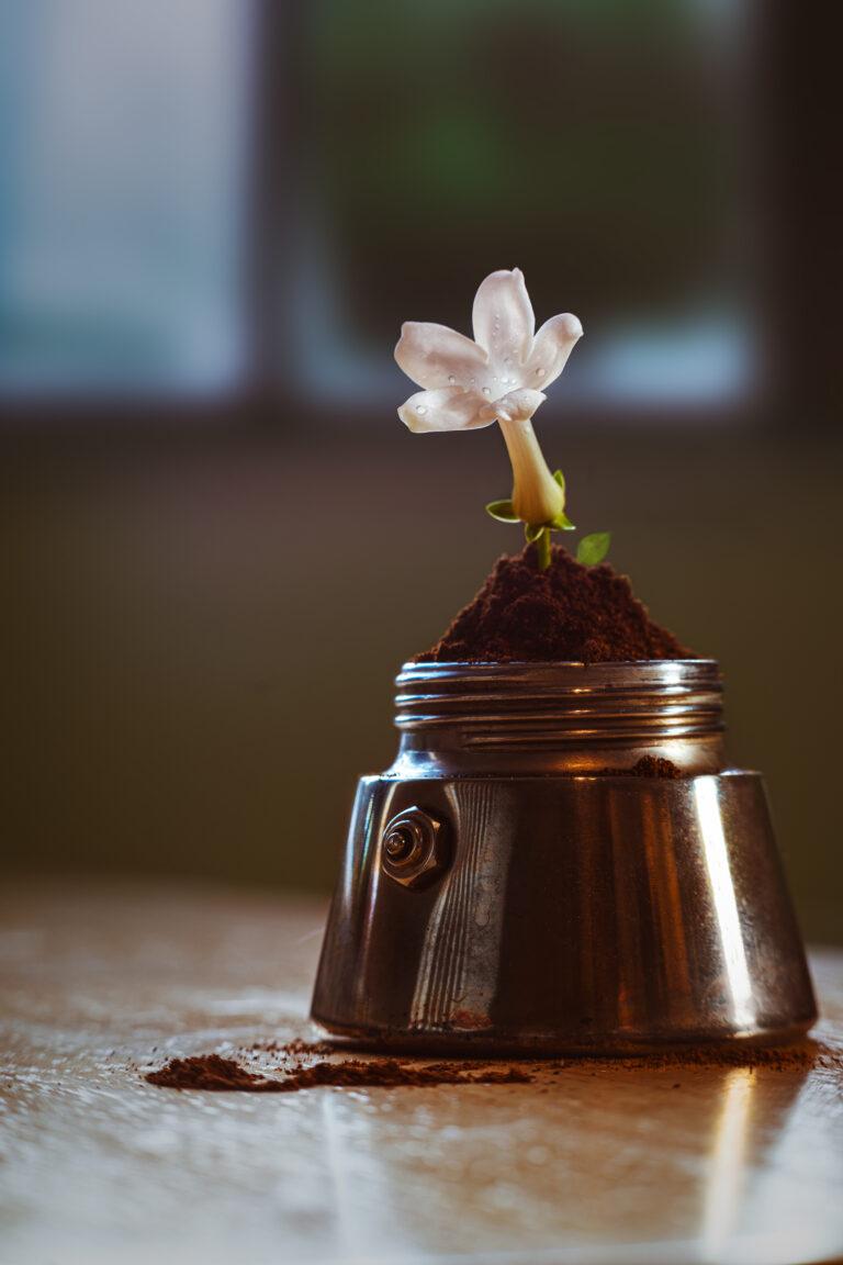 Coffee moka with flower